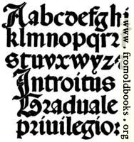 141.—Italian Round Gothic Small Letters.  16th Century.