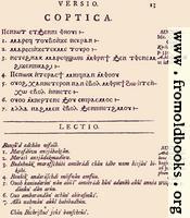 13: Coptica