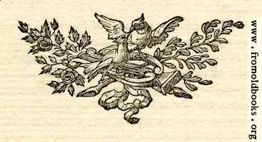 Printer's ornament with birds