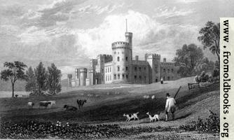 Plate 17.—Cyfartha Castle