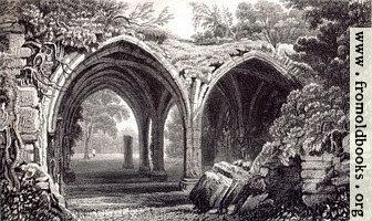 Plate 53.—Remains of the Cloisters of Margam Abbey, Glamorganshire.