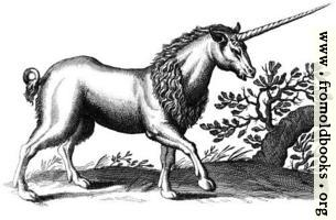 Unicorn with Mane (another one)
