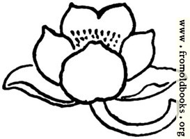 typographic ornament: flower pointing left