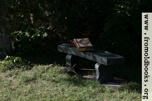 Stone bench with books 3