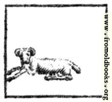 Aries (the Ram, or Sheep)
