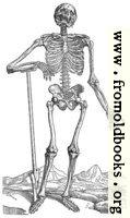 163. Skeleton with Shovel