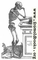 164. Skeleton with Skull