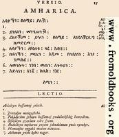 15: Amharica