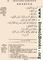 16: Arabica