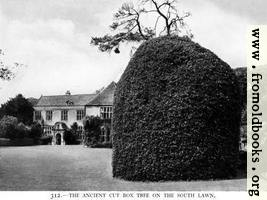 312.—Avebury Manor, Wiltshire