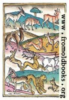 Page 113. Four Footed Beasts.