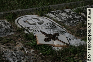 Open book with iron cross on grave