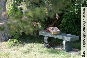 Stone bench under a tree with Bible, books and cross