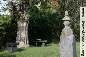 Tombstone with benches under tree