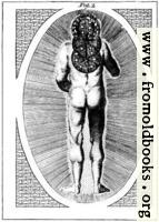 A View of Man in his Primeval State as invested With power by his Creator to rule & Govern gross Elements (Fig. 2 of 2)