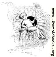 Boy Fairy Resting on a Flower