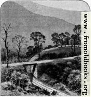 Darjeeling Railway 2