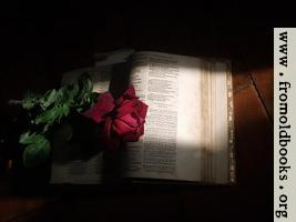 1581 Psalter with Rose