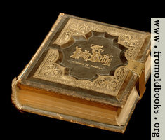 Holy Bible, 1875 edition (black background)