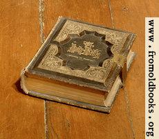 Holman's Holy Bible, 1875 edition